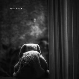 blackandwhite emotions stuffedtoy darkart photography