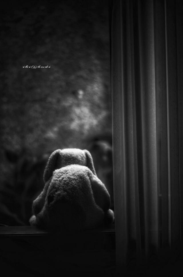 """The Dixie-land"" #blackandwhite #emotions #stuffedtoy #darkart #photography"