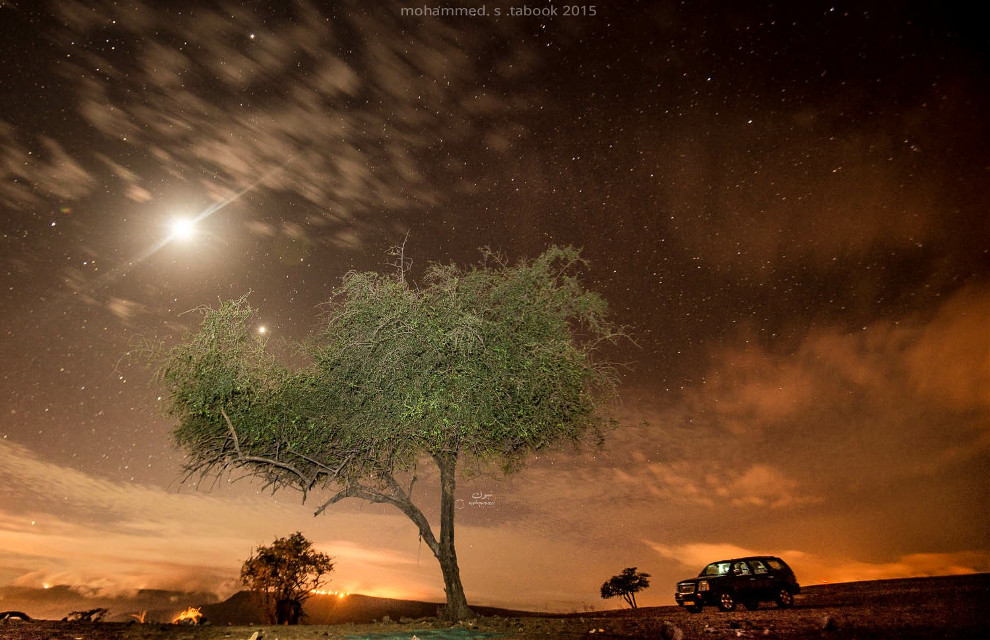 Tree and moon Oman-dhofar-Rakhyut  22-5-2015