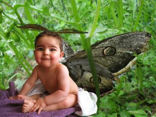 baby cute collage emotions nature