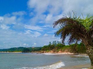 beach ocean sun
