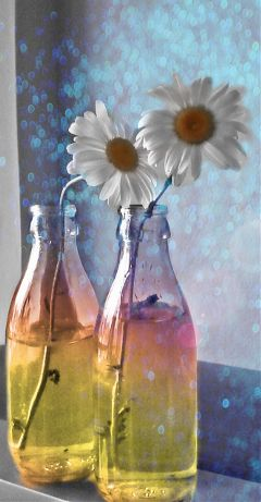 flower flowers bokeh colorful bottles