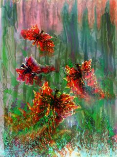 colorful freetoedit nature digital painting