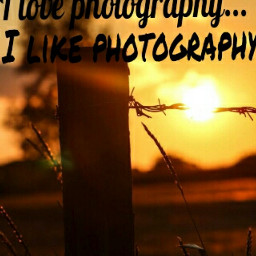gdcontrastingtype sunset photography summer words