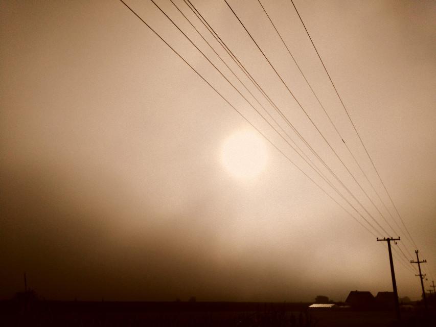 # fog  #morning