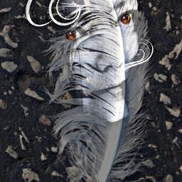 artisticselfie shapmask clipart feather overlay