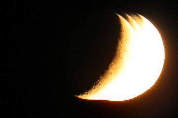 moon nighthawk nofilter